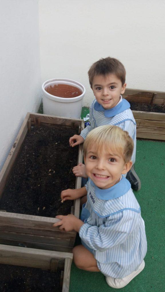 Plantando en nuestro huerto 🥕🌶🥬🥦🧅